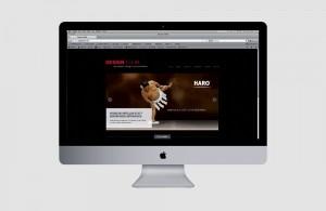 Responsive Webdesign: Design T.I.E.M. by MercuryBM