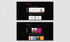 Responsive Webdesign: Design T.I.E.M. Projektscreens