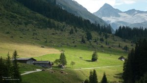 High alpine pasture in Hohe Tauern National Park 16:9