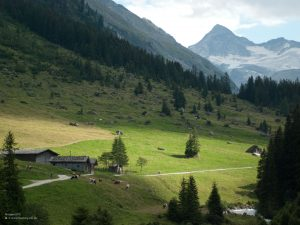 High alpine pasture in Hohe Tauern National Park 4:3