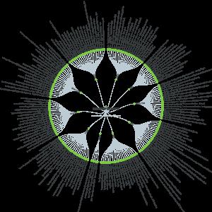 Artikel Kommunikation: answerthepublic Mindmap komplett